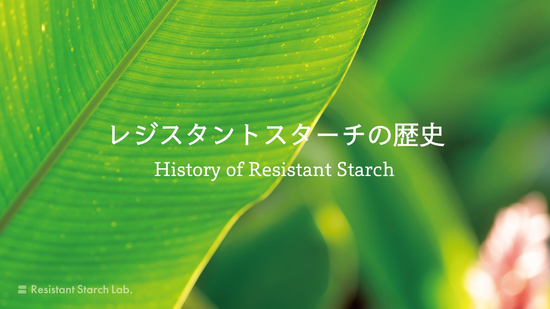 レジスタントスターチの歴史