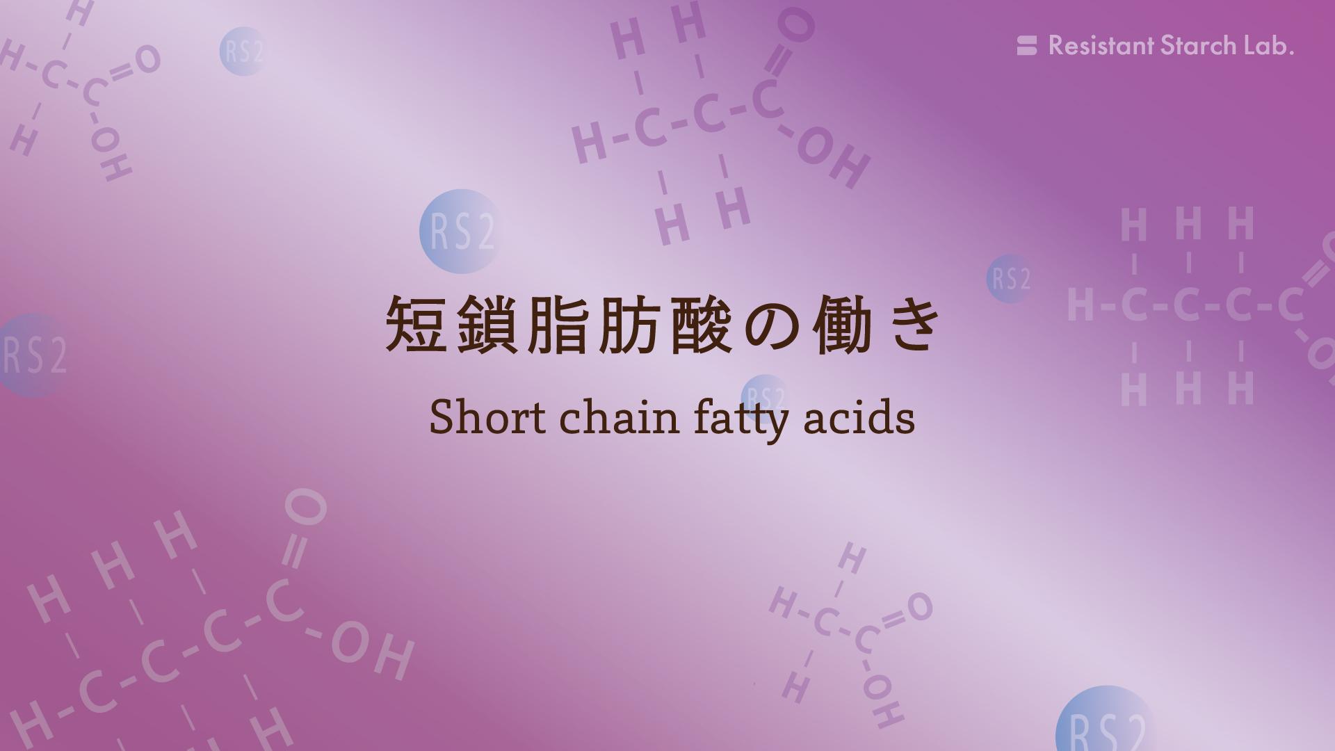 レジスタントスターチから産生される短鎖脂肪酸の働き